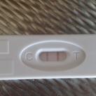 4 weken en 6 dagen