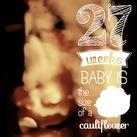 Ons mannetje 27-03-17 precies 27 weken